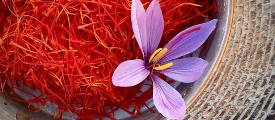 زعفران قائنات چیست؟